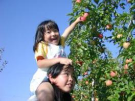 みはらしりんご園 りんご狩り