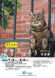 「岩合光昭の世界ネコ歩き」写真展