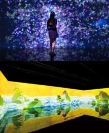 チームラボアイランド 踊る!美術館と、学ぶ!未来の遊園地