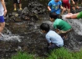 夏の小岩井農場まつり