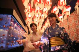 浴衣キャンペーン「金魚姫ナイト」