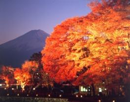 美しい紅葉と富士山のコラボレーション