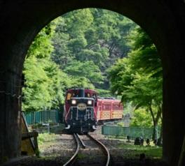夏休み企画「トロッコ納涼列車」