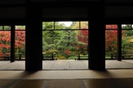 正伝永源院 秋の庭園特別公開 寺宝展