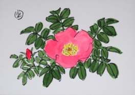 坂本直行絵画展 花と木々3