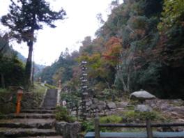 木々は10月下旬から色づき始める