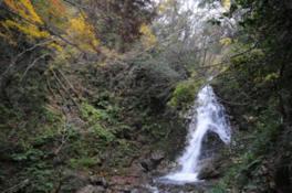 滝をバックに鮮やかな紅葉が広がる