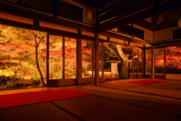 画聖雪舟が築庭したと伝えられ幻想的な風景が紅葉を引き立たせる