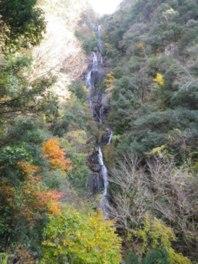 展望台から眺める常清滝と紅葉は絶景