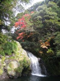 太龍の滝に色づくモミジやカエデが映える