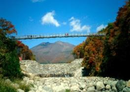 正面に不忘山を望む横川渓谷にある吊り橋