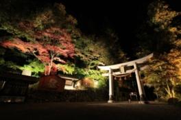 寶登山神社 紅葉ライトアップ
