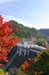 耶馬溪ダムから色づく山々が眺められる