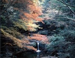 神秘的な景色の塔の滝