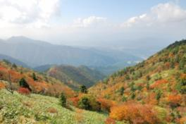 【紅葉・見ごろ】富士見台高原ヘブンスそのはら