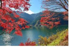 有馬渓谷下流に広がる名栗湖沿いの紅葉も見ものだ