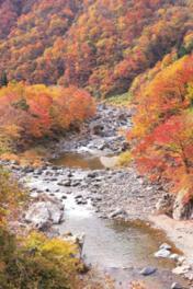 激流がつくりだした千尋の岩肌に映える紅葉