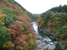 はねたき橋から見える紅葉