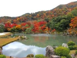 嵐山・亀山・小倉山を借景とした曹源池庭園