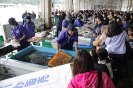 毎年大賑わいのイベント。水槽で泳ぐ活イカも販売する