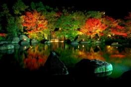 大池に映る錦色の紅葉が幽玄な世界を演出する