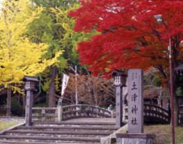 【紅葉・見ごろ】土津神社