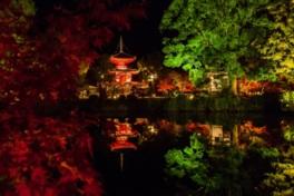 大沢池のほとりに佇む心経宝塔