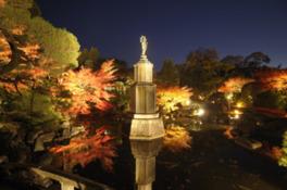ライトアップされた紅葉に囲まれた聖観音菩薩立像