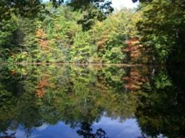 杣ケ池に映る見事な紅葉