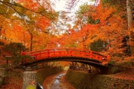 史跡御土居と鶯橋(うぐいすばし)