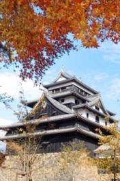 松江城と紅葉が織り成す美観