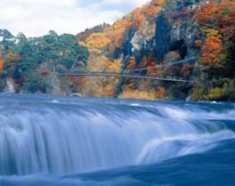 【紅葉・見ごろ】吹割の滝
