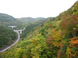 ループ橋を走り抜けながら眺める紅葉は絶景だ