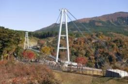 【紅葉・見ごろ】九重夢大吊橋