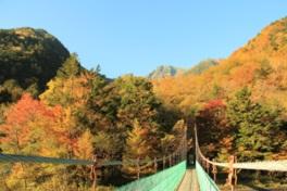 白鳳渓谷の吊橋からの紅葉と北岳