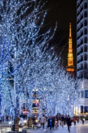 """寒色系LEDの""""SNOW&BLUE""""で彩られたけやき坂通り"""