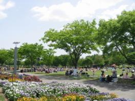 様々なイベントも開催、多数の来場者で賑わう芝生広場