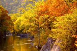 最もおすすめな紅葉の錦仙峡