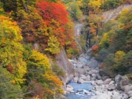 夫婦滝の紅葉