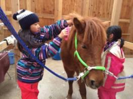 ネイチャーキッズ 馬と一緒に暮らす!牧場暮らしキャンプ