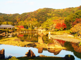 秋のいやしの南楽園