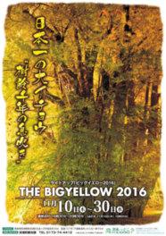 日本一の大イチョウ・ライトアップ「ビッグイエロー2016」