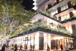 2016 東京スクエアガーデン ウィンターイルミネーション