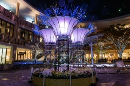LaLaport Yokohamaイルミネーションガーデン~自然と繋がる青の光~