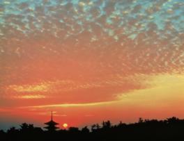 FUJIFILM SQUARE 写真歴史博物館企画写真展 入江泰吉 作品展「心の原風景 奈良大和路」