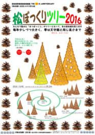 松ぼっくりツリーの展示2016
