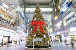 ステスク 20th Anniversary Happy Xmas Tree!!