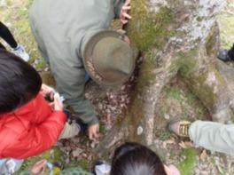里山自然教室「国蝶オオムラサキの舞う里山づくり」