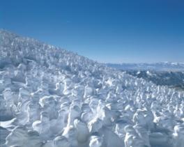 蔵王樹氷まつり2017