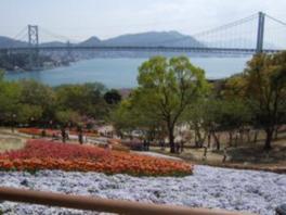 【花・見ごろ】火の山公園トルコチューリップ園